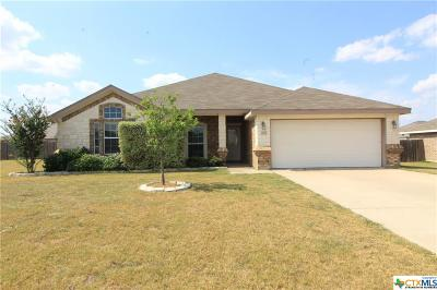 Killeen Single Family Home For Sale: 203 Rowdy Drive