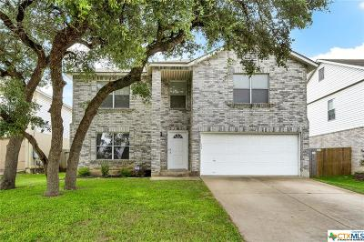 Cedar Park Single Family Home For Sale: 1002 Silverstone Lane
