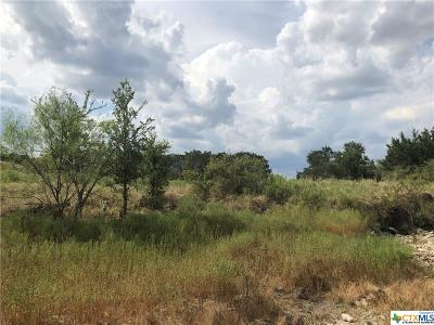 Lampasas County Residential Lots & Land For Sale: Tbd W Fm 580