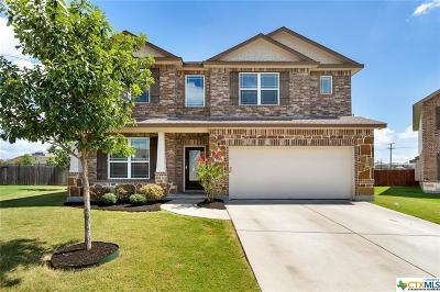 Round Rock Single Family Home For Sale: 5504 Sabbia Cove