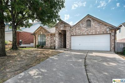 Round Rock Single Family Home For Sale: 2434 Roundabout Lane