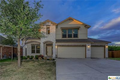 Hutto Single Family Home For Sale: 117 Turvey Cove