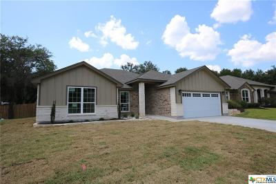 Belton Single Family Home For Sale: 875 Benchmark Trail