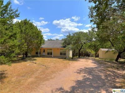 Fischer TX Single Family Home For Sale: $185,000