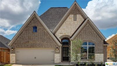 Bexar County Single Family Home For Sale: 14506 Hallows Grove