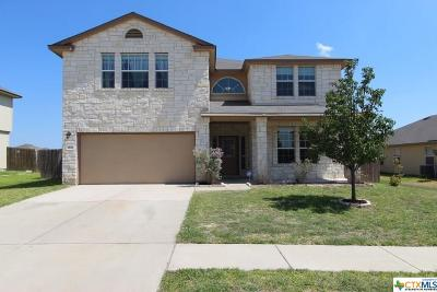 Coryell County Single Family Home For Sale: 1806 Terry Drive