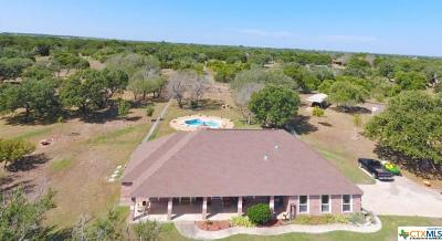 Lampasas Single Family Home For Sale: 1821 Cr 111