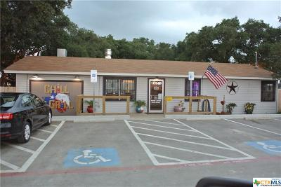 Killeen Commercial For Sale: 10540 S State Highway 195 Highway
