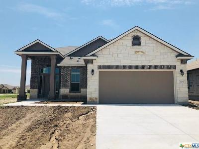 Bell County Single Family Home For Sale: 205 Bethann Drive