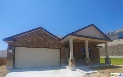 Killeen Single Family Home For Sale: 3810 Brunswick Drive