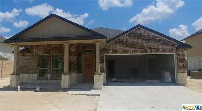 Killeen Single Family Home For Sale: 5002 Primavera Lane