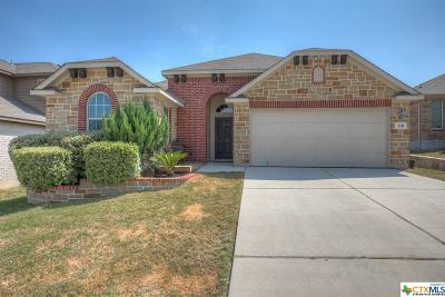 New Braunfels Single Family Home For Sale: 310 Posey Pass