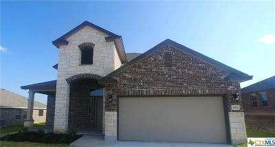 Killeen Single Family Home For Sale: 3808 Brunswick Drive