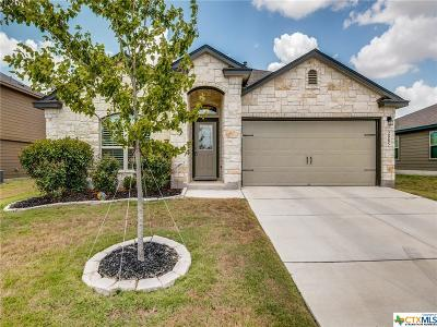 New Braunfels Single Family Home For Sale: 2585 Lonesome Creek Trail