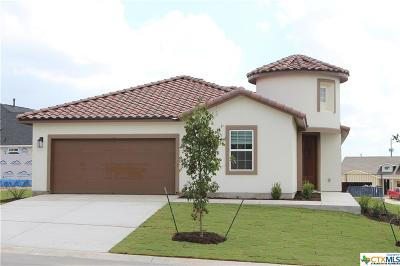San Marcos Single Family Home For Sale: 409 Flying Orchid Dr.