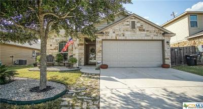 New Braunfels Single Family Home For Sale: 739 Guna Drive