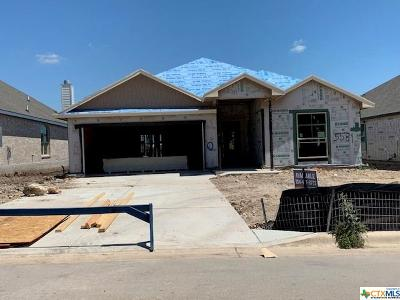 Belton Single Family Home For Sale: 5581 Perdita Drive