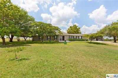Bell County Single Family Home For Sale: 12630 Romberg Road