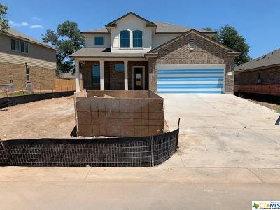 Belton Single Family Home For Sale: 5541 Othello Drive