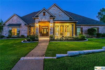 Temple, Belton, Salado, Troy Single Family Home For Sale: 2302 High View Drive