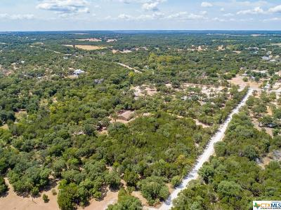 Leander Single Family Home For Sale: 180 Antlers Trail