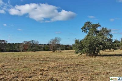 Belton Residential Lots & Land For Sale: 153 Indian Ridge Road