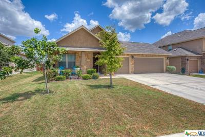 New Braunfels TX Single Family Home For Sale: $289,900
