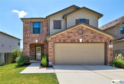 Kyle Single Family Home For Sale: 378 Tower Drive