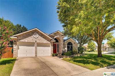 Cibolo Single Family Home For Sale: 236 Cordero Drive