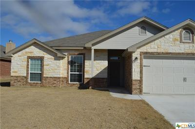Killeen Single Family Home For Sale: 3103 Briscoe Drive