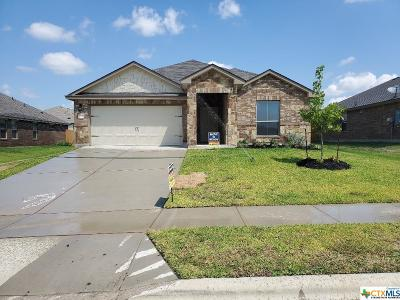 Killeen Single Family Home For Sale: 211 Danielle Drive
