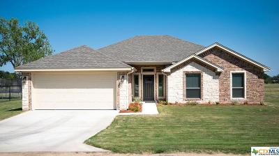 Coryell County Single Family Home For Sale: 127 Surrey Lane