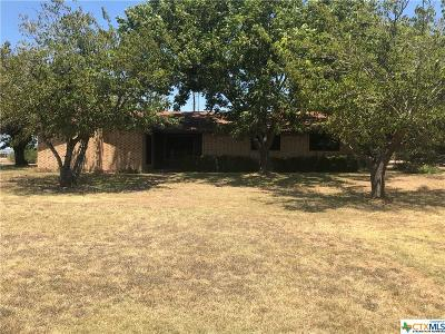 Bell County Single Family Home For Sale: 2545 Auction Barn Road