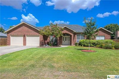 Seguin Single Family Home For Sale: 117 Bosque