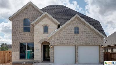 New Braunfels Single Family Home For Sale: 3236 Arroyo Del Sol