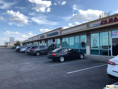 Harker Heights Commercial For Sale: 546 E Fm 2410 Road