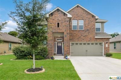 New Braunfels Single Family Home For Sale: 279 Lillianite