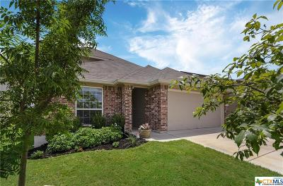 Georgetown TX Single Family Home For Sale: $258,500