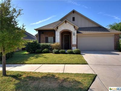 Georgetown TX Single Family Home For Sale: $278,900