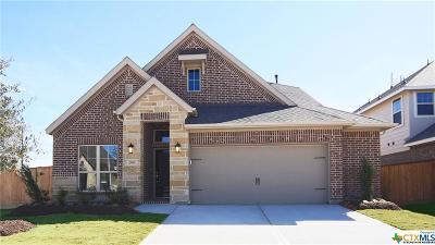 New Braunfels Single Family Home For Sale: 616 Arroyo Dorado