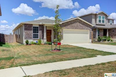 New Braunfels Single Family Home For Sale: 134 Texas Thistle