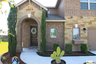 Hutto TX Single Family Home For Sale: $339,000