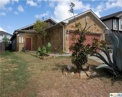 San Marcos Single Family Home For Sale: 105 Silo Street