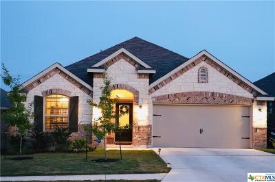 New Braunfels Single Family Home For Sale: 2945 Sunset Summit