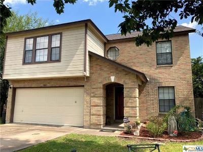 Kyle Single Family Home For Sale: 7001 High Meadows Lane