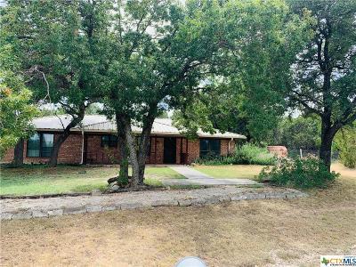 Kempner Single Family Home For Sale: 4990 Fm 2808