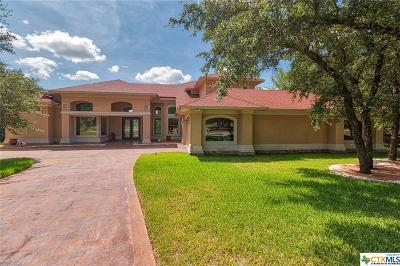 Belton Single Family Home For Sale: 130 Lost Mesa Drive