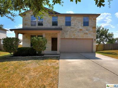 Hays County Single Family Home For Sale: 136 Regent Cove
