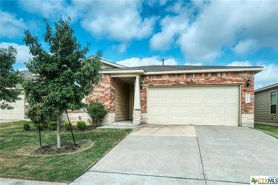 Austin Single Family Home For Sale: 4608 Belfield Lane