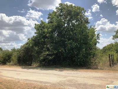Lampasas County Residential Lots & Land For Sale: Tbd 3rd St